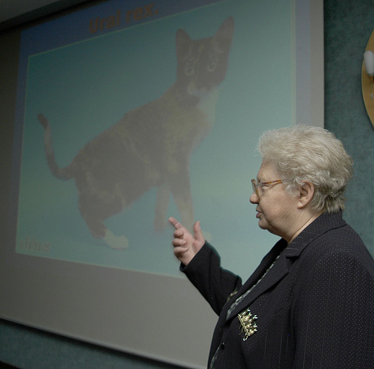 Olga Mironova, WCF all-breed judge from Russia introduced one of the WCF's newest breeds - the Ural Rex.