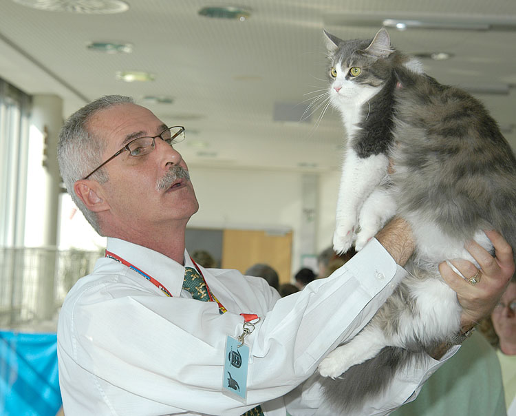 Kaai du Plessis, delegate to the World Cat Congress from the Southern Africa Cat Council.