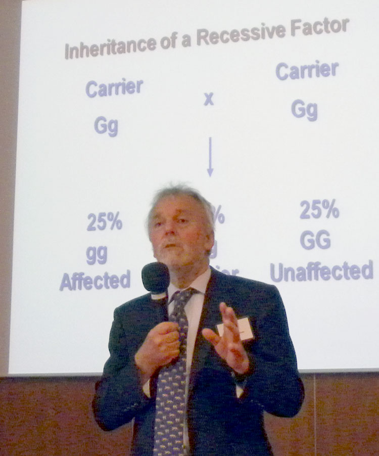Professor Tim Gruffyd-Jones speaking at WCC 2012 Seminar.