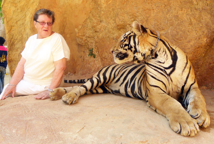 Australian judge Marion Cooper who attended the WCC and stayed to enjoy the tigers